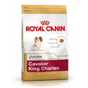 royal-canin-cavalier-king-charles-junior