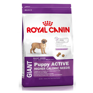 royal-canin-giant-puppy-active