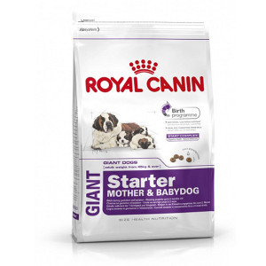 royal-canin-giant-starter