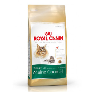 royal-canin-maine-coon-31