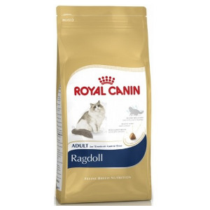 royal-canin-ragdoll