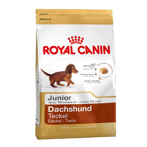 royal-canin-teckel-junior