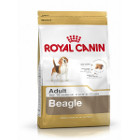 royal-canin-beagle