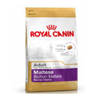 royal-canin-bichon-maltais-adult