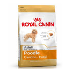 royal-canin-caniche-adult