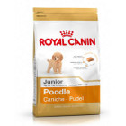 royal-canin-caniche-junior