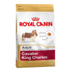 royal-canin-cavalier-king-charles-adult