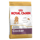 royal-canin-cocker-junior