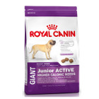 royal-canin-giant-junior-active