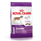 royal-canin-giant-junior